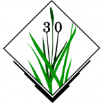 Logo - 30 years of GRASS GIS